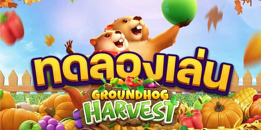 ทดลองเล่นสล็อต-Groundhog-Harvest